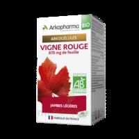 Arkogélules Vigne Rouge Bio Gélules Fl/45 à THONON-LES-BAINS
