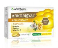 Arkoroyal Propolis Pastilles Adoucissante Gorge Guimauve Miel Citron B/24 à THONON-LES-BAINS