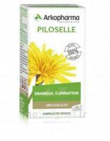 Arkogélules Piloselle Gélules Fl/45 à THONON-LES-BAINS