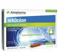 Arkocean Magnesium Marin Solution Buvable Caramel 20 Ampoules/10ml