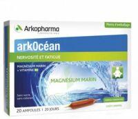 Arkocean Magnesium Marin Solution Buvable Caramel 20 Ampoules/10ml à THONON-LES-BAINS