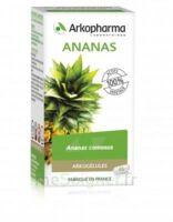 Arkogélules Ananas Gélules Fl/45 à THONON-LES-BAINS