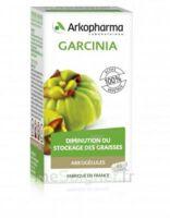 Arkogélules Garcinia Gélules Fl/45 à THONON-LES-BAINS