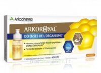 Arkoroyal Défenses Naturelles Gelée Adulte 7 Doses/10ml à THONON-LES-BAINS