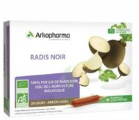 Arkofluide Bio Ultraextract Radis Noir Solution Buvable 20 Ampoules/10ml à THONON-LES-BAINS