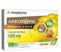 Arkoroyal Gelée Royale Bio 1000 Mg Solution Buvable 20 Ampoules/10ml à THONON-LES-BAINS