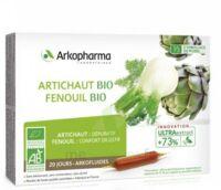 Arkofluide Bio Ultraextract Artichaut Fenouil Solution Buvable 20 Ampoules/10ml à THONON-LES-BAINS