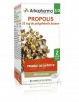 Arkogélules Propolis Bio Gélules Fl/45 à THONON-LES-BAINS