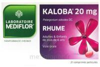 Kaloba 20 Mg Comprimé Pelliculé Plq/21 à THONON-LES-BAINS
