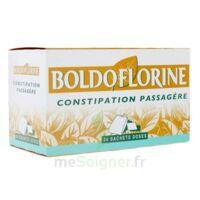 Boldoflorine, Mélange De Plantes Pour Tisane En Sachet-dose B/24 à THONON-LES-BAINS