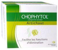 Chophytol Cpr Enr 6plaq/30 à THONON-LES-BAINS