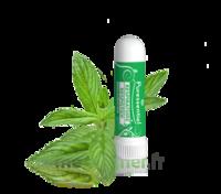 Puressentiel Respiratoire Inhaleur Respiratoire Aux 19 Huiles Essentielles - 1 Ml à THONON-LES-BAINS