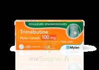 Trimebutine Mylan Conseil 100 Mg, Comprimé à THONON-LES-BAINS