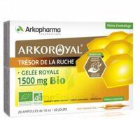 Arkoroyal Gelée Royale Bio 1500 Mg Solution Buvable 20 Ampoules/10ml à THONON-LES-BAINS