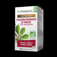 Arkogélules Marronnier D'inde Bio Gélules Fl/45 à THONON-LES-BAINS