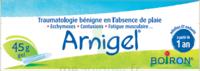 Boiron Arnigel Gel T/45g à THONON-LES-BAINS